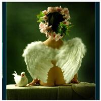 摄影道具/天使翅膀/小天使翅膀 儿童拍照摄影道具白色天使翅膀