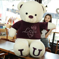 熊毛绒玩具泰迪熊猫公仔送女友生布娃娃抱抱熊情人节生日礼物