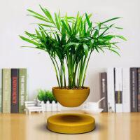 磁悬浮盆栽创意摆件客厅桌面装饰开业礼品工艺品*长辈的礼物
