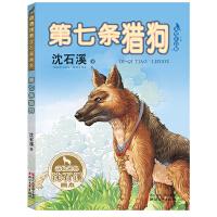 第七条猎狗(动物世界沈石溪画本 美绘注音版)