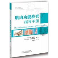 肌肉功能检查指导手册 天津科技翻译出版公司
