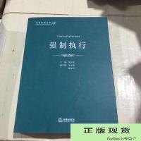 【旧书二手书9成新】法官智库丛书:强制执行 /张永红 法律出版社9787511841766