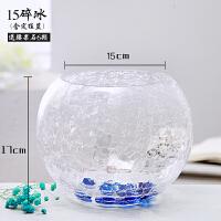 玻璃花瓶透明 风信子绿萝花盆客厅室内鱼缸圆形水培水养植物器皿
