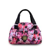 新款手提包女士韩版新款印花休闲单肩斜挎小包包尼龙帆布女包