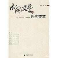 中国文学的近代变革 袁进 广西师范大学出版社