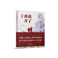 丁香花开了 安宁 江苏凤凰文艺出版社