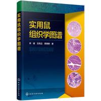 实用鼠组织学图谱 9787122303349 李健,文凤云,贾艳艳 化学工业出版社