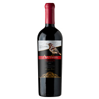 艾维达家族陈酿赤霞珠干红葡萄酒 智利原瓶进口 750ML