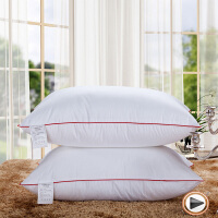 伊迪梦家纺 全棉高支高密压线羽丝绒枕芯 高泡高蓬松枕头 护颈枕单人枕靠垫枕LA41