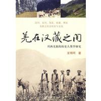 羌在汉藏之间:川西羌族的历史人类学研究【正版特价】