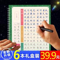 TAMOXU 碳墨轩 WYBW-1001 文房鑫一宝 成人硬笔书法行书速成练字帖 当当自营