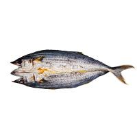 【烟台特产馆】淡干鲅鱼干约620g1条装 咸马鲛鱼干海鲜干货咸鱼干风干鲅鱼干