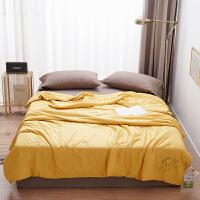 伊迪梦家纺大豆纤维夏被空调被夏凉被子被芯裸睡抱被天丝冰感丝床上用品PV02