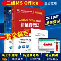2019年9月全国计算机二级ms office2019 计算机等级二级考试 上机考试题库+模拟考场 计算机2级 高级应用 真考题库(全套2本)