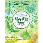 绿野仙踪(新课标,美国版《西游记》,稳居美国童书畅销榜首长达24个月)