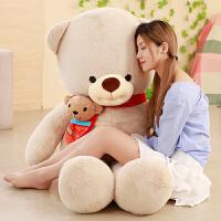 可爱抱抱熊玩偶靠枕围巾熊公仔毛绒玩具
