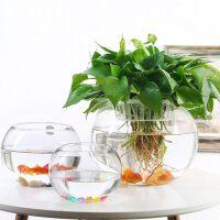 {夏季贱卖}室内绿萝水培花盆透明玻璃花瓶大号花卉水养植物器皿鱼缸客厅摆件
