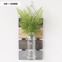 墙面装饰水培花瓶壁挂创意房间墙壁饰花艺植物家居餐厅墙上挂件