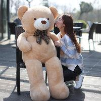 大号毛绒玩具泰迪熊公仔抱抱熊玩偶布娃娃抱枕生日礼物送女友