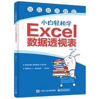 正版 小白轻松学Excel数据透视表 Excel数据透视表零基础入门书 轻松快速地掌握Excel数据透视表 数据透表应用