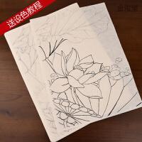 工笔画白描底稿临摹练习初学者入门国画水彩花鸟牡丹勾线熟宣宣纸 3种图案,共15张,可直接设色