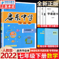 启东中学作业本七年级下册数学人教版