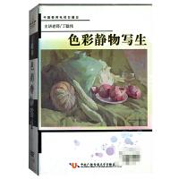 新华书店正版 丁聪伟 色彩静物写生 六片装 DVD