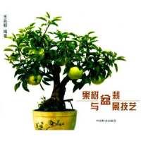果树盆栽与盆景技艺【正版图书,达额立减】