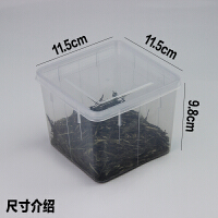 塑料透明四方盒 小号带盖保鲜盒子塑料调料盒储物盒透明盒留样