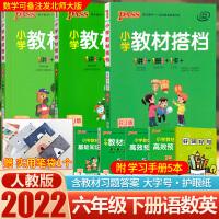 小学教材搭档六年级下册语文数学英语部编人教版pep 2021新版