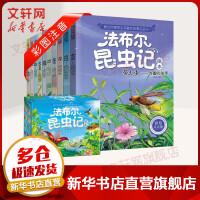【领券满128减100】法布尔昆虫记(注音版)(带盒)全10册 长江出版社