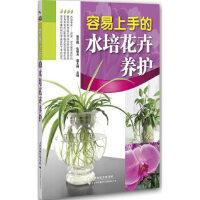 容易上手的水培花卉养护 张华颖,仇继东,霍文娟 天津科技翻译出版公司