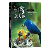 野鸟放大镜住行篇(自然观察丛书)
