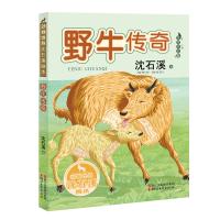 野牛传奇(动物世界沈石溪画本 美绘注音版)