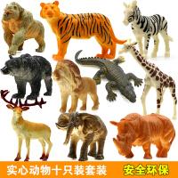 恐龙玩具仿真实心翼龙手办模型 动物套装男孩儿童玩具