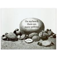 【5折封顶】李欧・李奥尼 On My Beach There Are Many Pebbles 【平装】