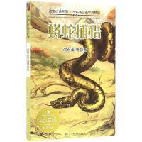 蟒蛇捕猎 沈石溪 等 著