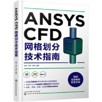 ANSYS CFD网格划分技术指南