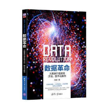 数据革命:大数据价值实现方法、技术与案例(pdf+txt+epub+azw3+mobi电子书在线阅读下载)
