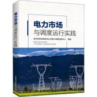 电力市场与调度运行实践 中国电力出版社