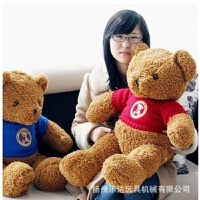 维莱 毛绒玩具 毛衣情侣泰迪熊生日礼物可爱抱抱熊 红色毛衣 65CM