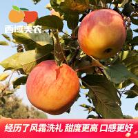 西域美�r 新疆阿克�K冰糖心�O果水果��季�F摘�r令生�r ��箱5斤�b 果��80-85mm