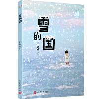 雪的国(王璐琪少年小说系列)