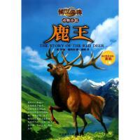鹿王 外语教学与研究出版社
