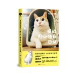 黄阿玛的日常:猫的内心独白日记