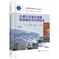 合成孔径雷达图像信息解译与应用技术
