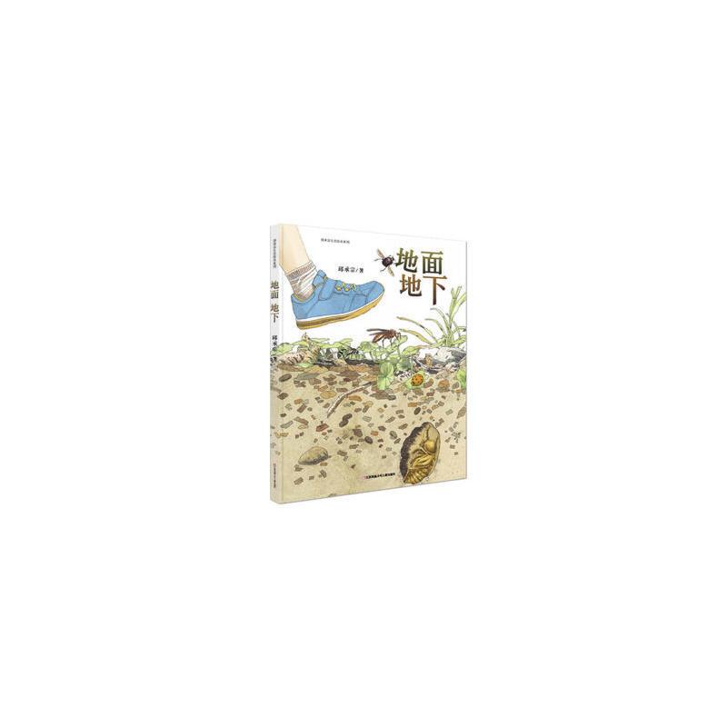 首届丰子恺优秀儿童图画书奖:池上池下+地面地下(清华附小推荐 科普绘本 大自然是最好的老师 全2册) 正版书籍 限时抢购 当当低价