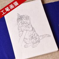 工笔画白描底稿手绘萌猫画谱线描临摹练习熟宣纸宠物水彩国画上色
