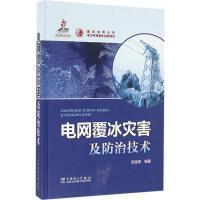 电网覆冰灾害及防治技术 陆佳政 编著