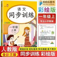 语文同步训练一年级上册 人教部编版